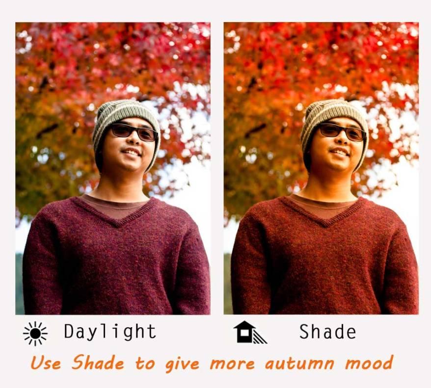 autumn white balance